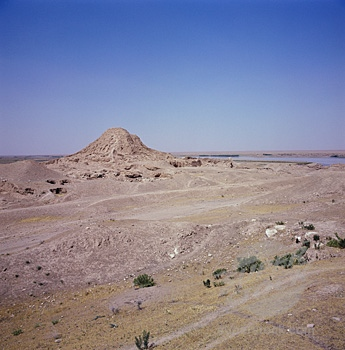 Ziggurat at Ashur for a distance
