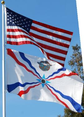 Follow this link to a collection of American Assyrian flags